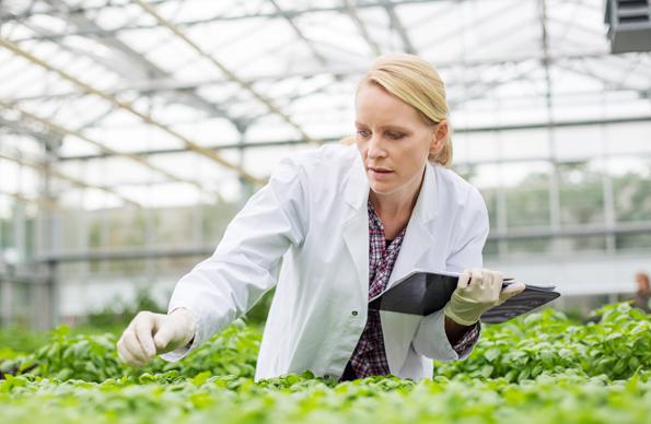 Why Life Sciences Enterprises Need SAP S/4HANA?