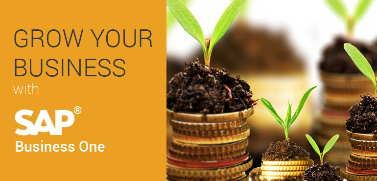 Manage and Grow your Business with SAP Business One