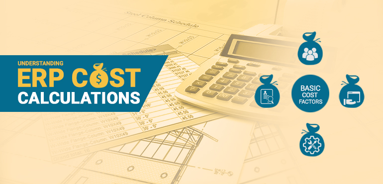 Understanding ERP Cost Calculations