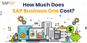 Blog Image-How-Much-does-sap-business-one-cost