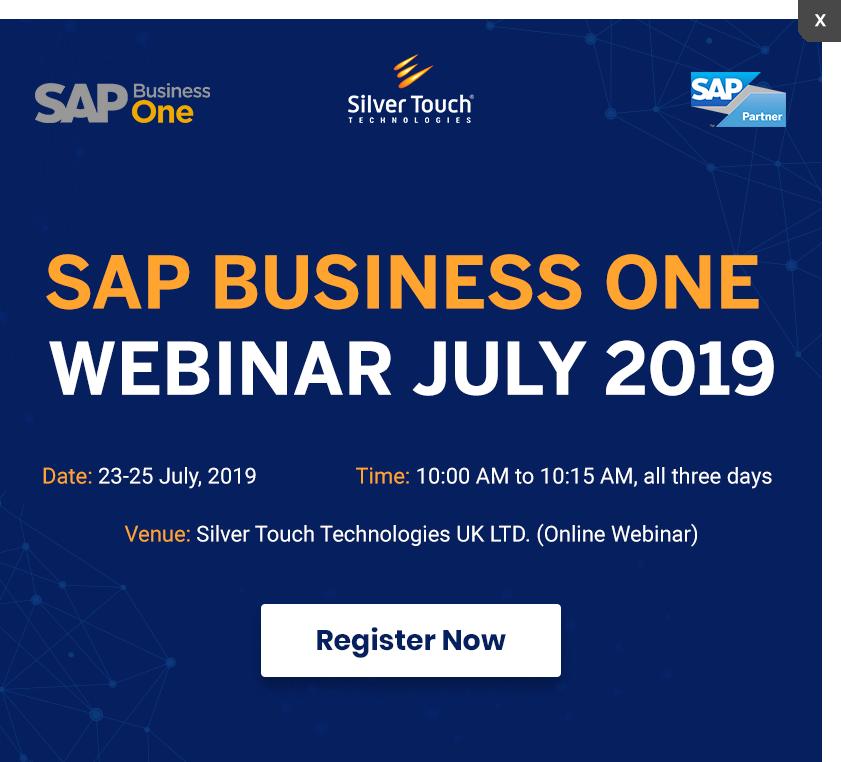 The SAP Business One Webinar